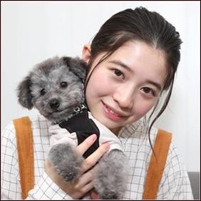 桜田ひよりの愛犬アルク2ショット画像