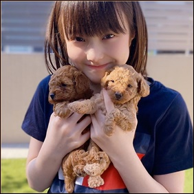 本田紗来の愛犬は?犬種や名前・毛色や大きさなどの情報まとめ!
